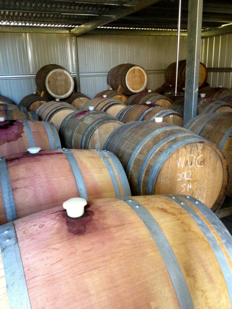 condie wine, condie estate, heathcote, winery, cellar door, barrels